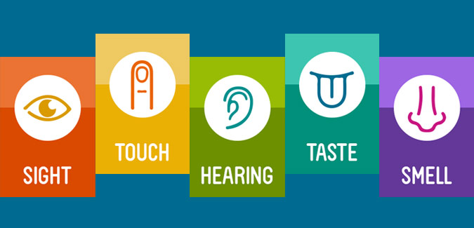 What are 5 Human Senses? Its applicability in shopper insight